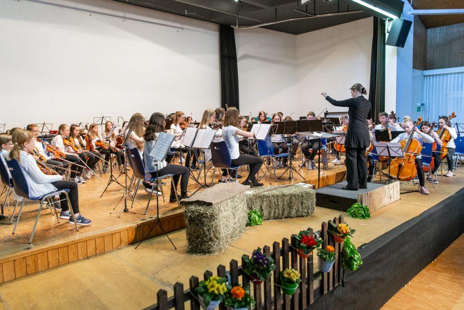 Jugendstreichorchester Oberer Sempachersee & Stern unter der Leitung von Carmen Angst (Foto: Roman Beer)